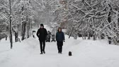 wintertime : Moscow, Russia - January 31. 2018. People walk along snow-covered city park in Zelenograd. Stock Footage