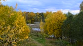 fallendes blatt : Autumn landscape with pond in Russia