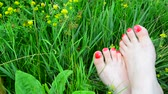 tırnak : Well-groomed female legs with a red pedicure on green grass