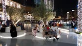 próximo : Dubai, UAE - April 8. 2018. Tourists in front of world famous shopping center Dubai Mall Stock Footage