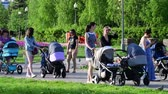 waggon : Moscow, Russia - May 15. 2018. Moms with strollers walk along boulevard in Zelenograd Stock Footage