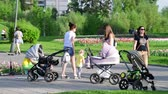 Клумба : Moscow, Russia - May 15. 2018. Moms with strollers walk along boulevard in Zelenograd Стоковые видеозаписи