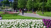 Клумба : Moscow, Russia - May 15. 2018. Boulevard decorated with flowers to people in Zelenograd