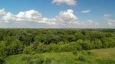tiras : Rural landscape with forest and ponds in Russia, top view Stock Footage