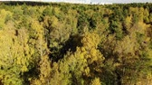 administrativo : Autumn forest on outskirts of Moscow in Russia