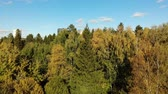 administrativo : top view on ecologically clean area of Moscow with autumn forest. Russia
