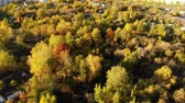 administrativo : Flight over Autumn forest on outskirts of Moscow in Russia