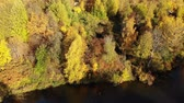 lombhullató : Autumn yellow trees on shore of the pond. view from above. Russia Stock mozgókép