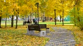 ecologisch : Moscow, Russia - October 3. 2019. Beautiful city autumn park with a bench