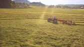 mowed : Aerial of Tractor collects Hay on the field in a green line sunny day in the mountains 4K