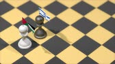 filistin : Chess Pawn with country flag, Palestine, Israel.