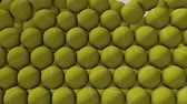 Tennis ball animation filling up spaces. matte included. Stok Video