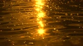 cintilante : Golden sunlight sparkling on slow water ripples at sunset among floating air bubbles Stock Footage