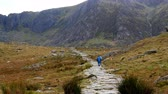 wales : Two men and dog hiking mountain path toward lake Llyn Idwal in Snowdonia, North Wales, United Kingdom, rear view