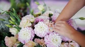 roos : Close-Up of Florist Hands Making Beautiful Bouquet of Pink Dahlias Flowers for Decoration of Wedding Celebration