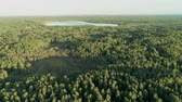 ecotourisme : 4K Aerial View of Amazing Lake in Dense Green Forest in Summer with Beautiful Sunlight, Belarus, Europe. Epic Ecotourism Place with Nature Landscape. Drone Long Zoom Out Shot