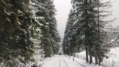 empolgante : Impressive view of straight rails , high fir trees and hill slopes covered with heavy snow from a fast moving train in the daytime in winter Stock Footage