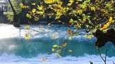 manavgat : Waterfall and autumn leaves. Manavgat waterfall in Turkey.