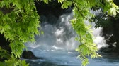 manavgat : Trees with green leaves in front of the waterfall in Turkey. Stock Footage