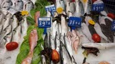Fishes on workbench for sale at. Stock Footage