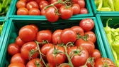 Fresh vegetables - red tomatoes, green peppers - for sale in a market.