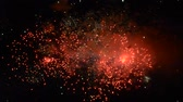 bellissimo : Beautiful fireworks that light up and color the dark night sky. video