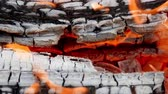 çatırtı : The flame of fire from the burning firewood in the fireplace