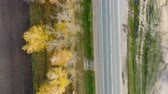 Aerial view of cars driving on country autumn road Стоковые видеозаписи