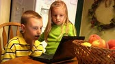 caderno : Young children use a laptop in the kitchen. Stock Footage