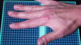 senha : An animated hand scanner screen.