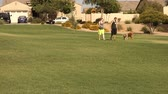 antreman : A young millennial couple walks their dogs in a typical Arizona neighborhood or public park. Stok Video