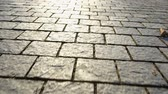 булыжник : Pavement made of stone. Beautiful garden walkway Стоковые видеозаписи