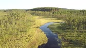 bosques : Scandinavian river with a lake at the beginn