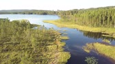 bosques : Scandinavian river with a lake at the end Stock Footage