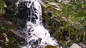 bosques : small waterfall in the mountains