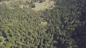 bosques : Drone flight over a forest in a hilly area