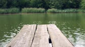bosques : a boat dock on a small lake
