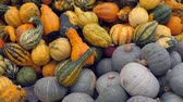 citrouille : the typical Halloween pumpkins