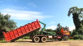 Truck Lifting A Palm Oil Fruit Container Stok Video