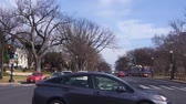 estados unidos : Cars Stopped At Zebra Crossing Waiting For Green Light - Static Stock Footage
