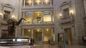 government district : Elephant Exposed Near People In Museum - Pan - Right To Left