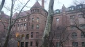 kereszt : Red Brick Building Behind Dry Trees - Pan - Right To Left