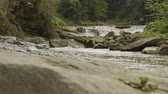 řev : Sliding video of a rapid mountain river with cascades in canyon, big stone on foreground