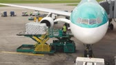 aerofoil : green plane standing at airstrip is loaded with goods by service workers