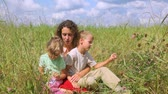 field : mother with daughter and son in the field, sitting in the grass Stock Footage