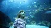 movimentar se : little girl on close shot standing in oceanarium looking round