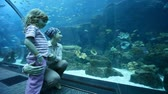 different kinds : young woman and her little daughter are at the aquarium Stock Footage
