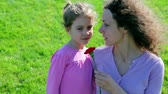 goździk : Mother hold red flower and tell about WWII to her little daughter at background of green grass Wideo