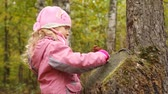 questões : Little girl plays with small doll about stub in autumn wood