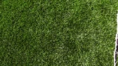 gridiron : Green artificial grass of soccer field, part of gate for soccer with net